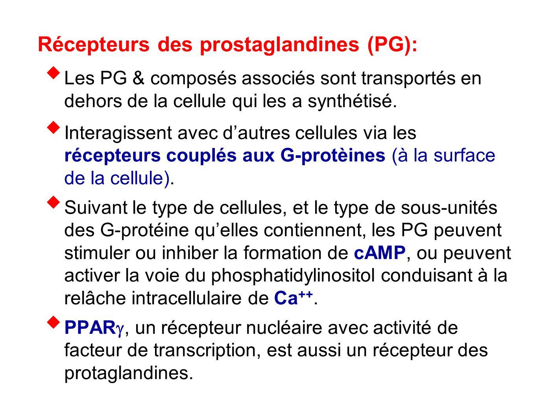 Récepteurs des prostaglandines (PG):