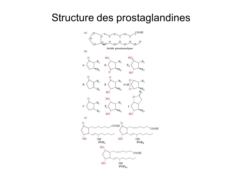 Structure des prostaglandines