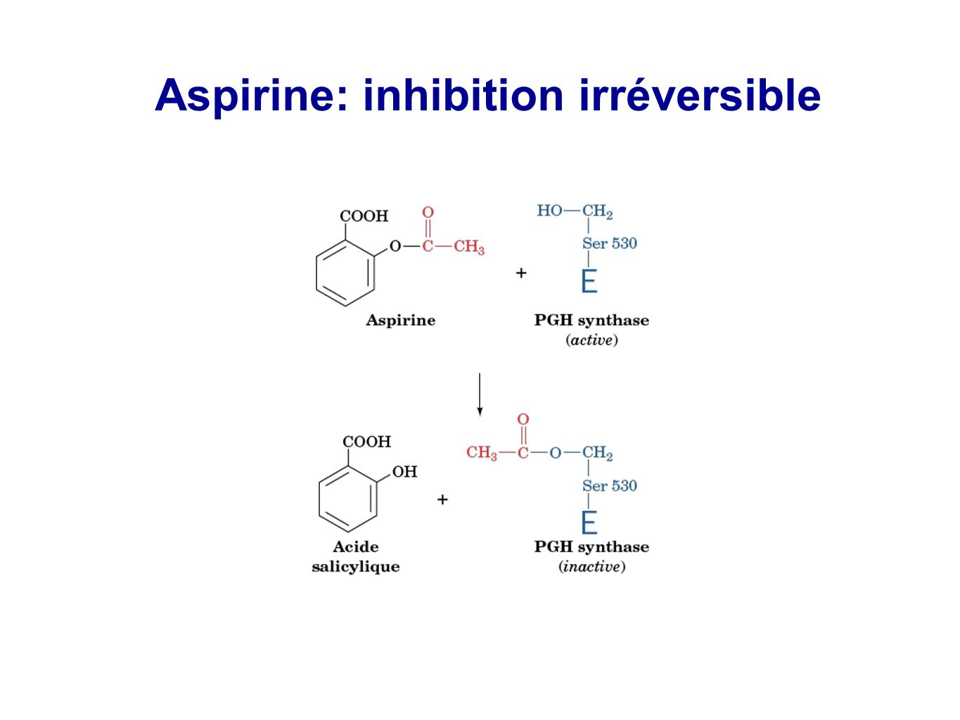 Aspirine: inhibition irréversible