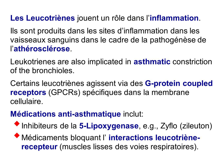Les Leucotriènes jouent un rôle dans l'inflammation.