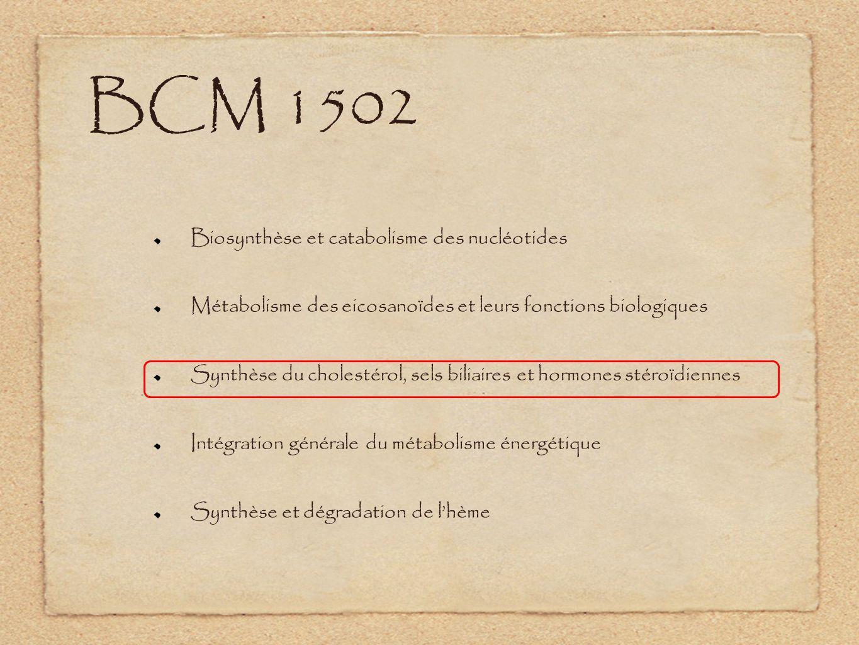 BCM 1502 Biosynthèse et catabolisme des nucléotides
