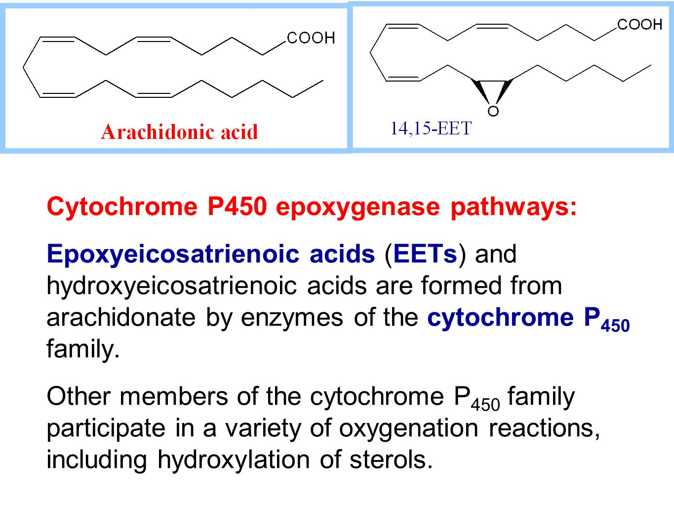 Cytochrome P450 epoxygenase pathways: