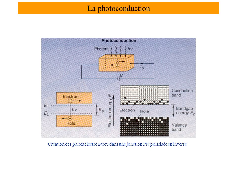 La photoconduction Création des paires électron/trou dans une jonction PN polarisée en inverse