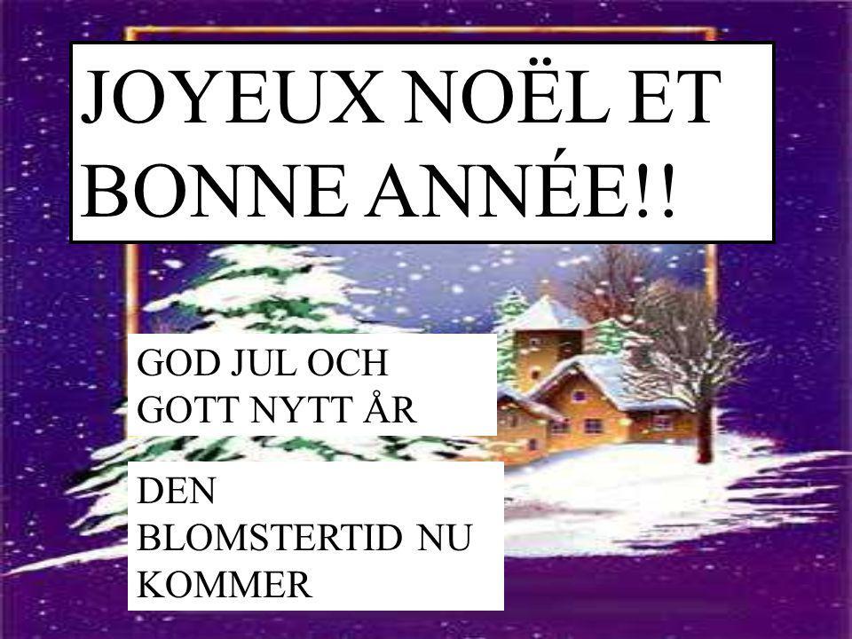 JOYEUX NOËL ET BONNE ANNÉE!!