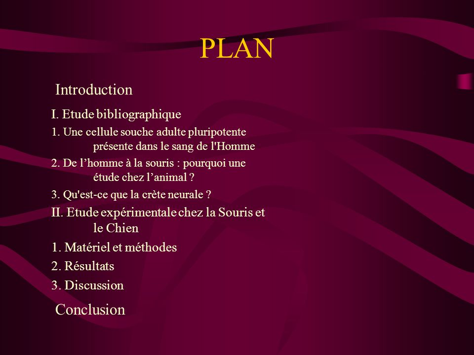 PLAN Introduction Conclusion I. Etude bibliographique