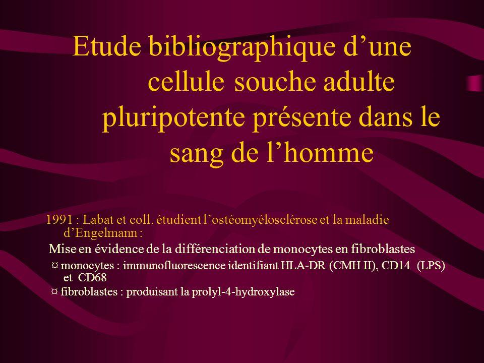 Etude bibliographique d'une cellule souche adulte pluripotente présente dans le sang de l'homme