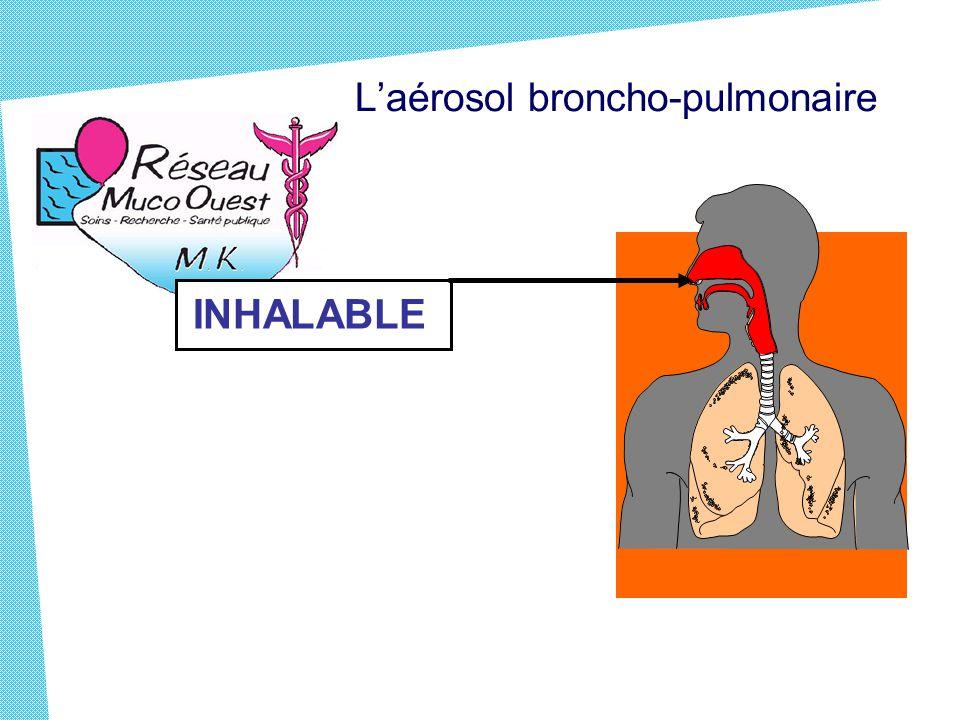 L'aérosol broncho-pulmonaire