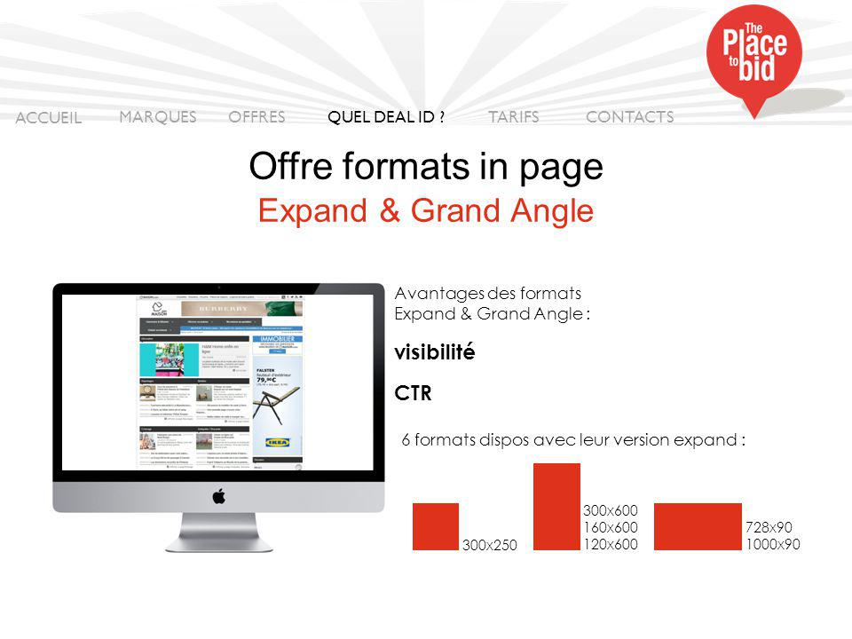 Offre formats in page Expand & Grand Angle visibilité CTR ACCUEIL
