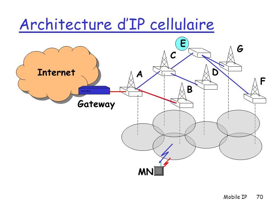 Architecture d'IP cellulaire