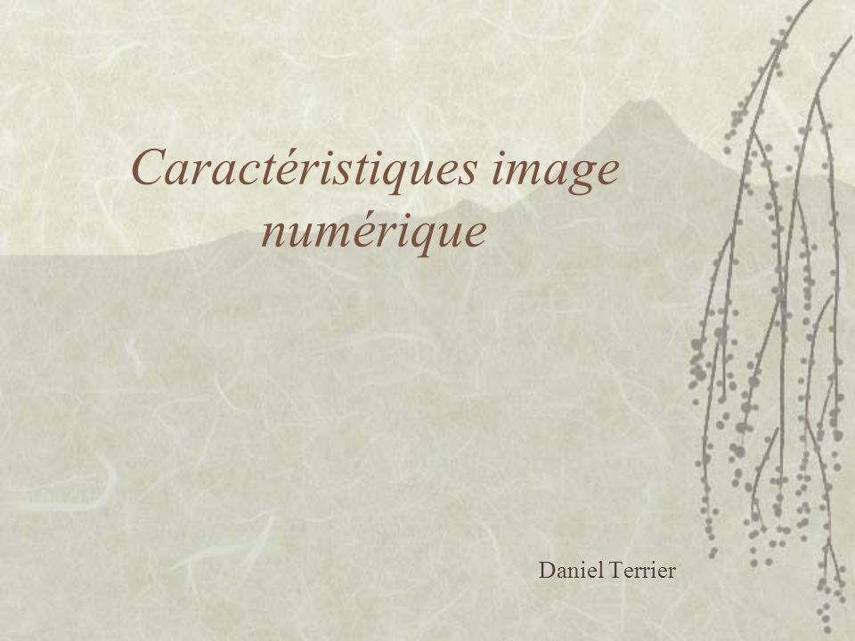 Caractéristiques image numérique