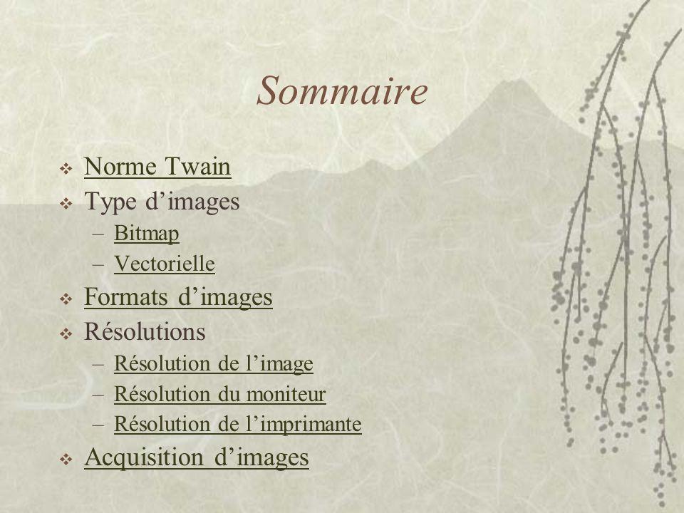 Sommaire Norme Twain Type d'images Formats d'images Résolutions