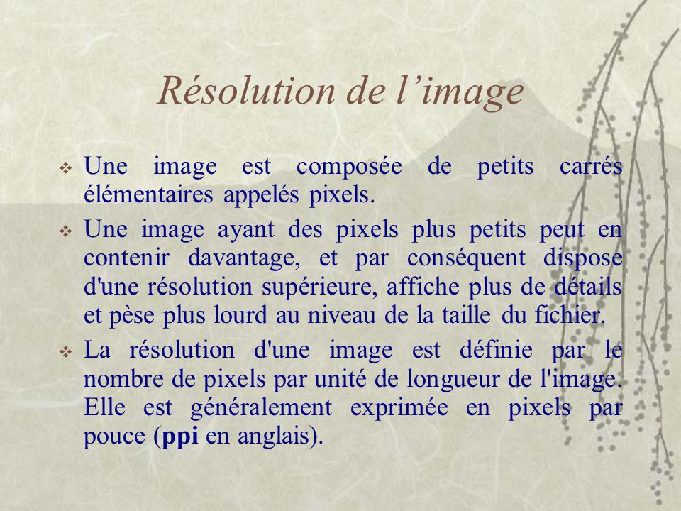 Résolution de l'image Une image est composée de petits carrés élémentaires appelés pixels.