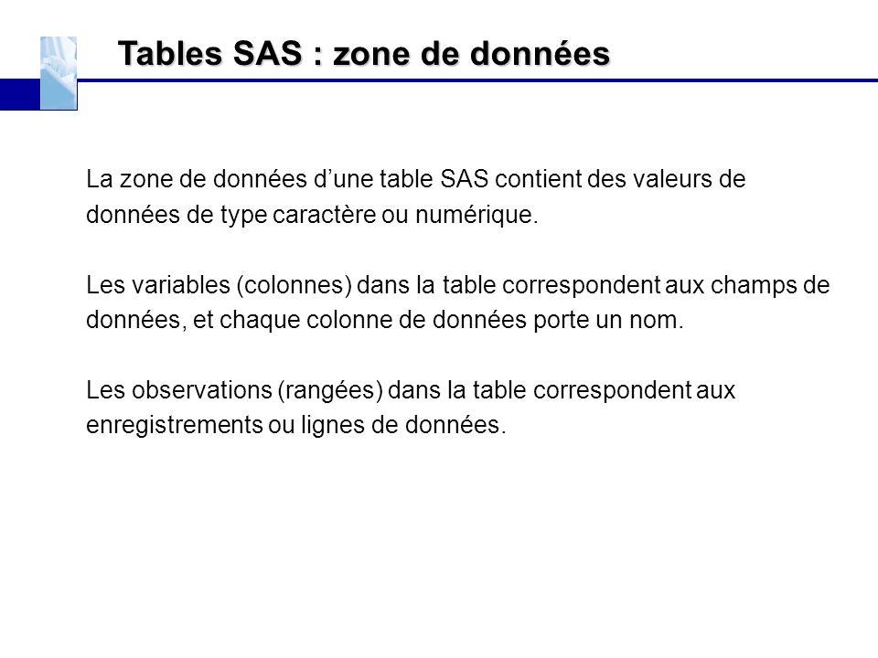 Tables SAS : zone de données