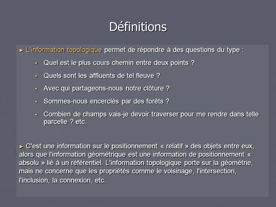 Définitions L information topologique permet de répondre à des questions du type : Quel est le plus cours chemin entre deux points
