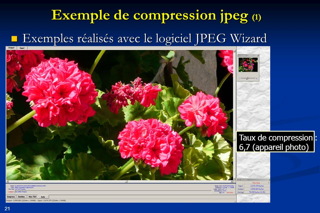 Exemple de compression jpeg (1)