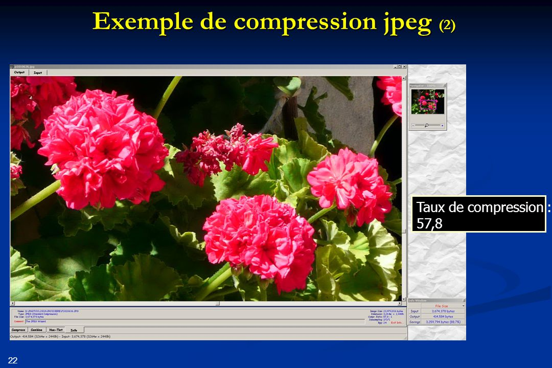 Exemple de compression jpeg (2)