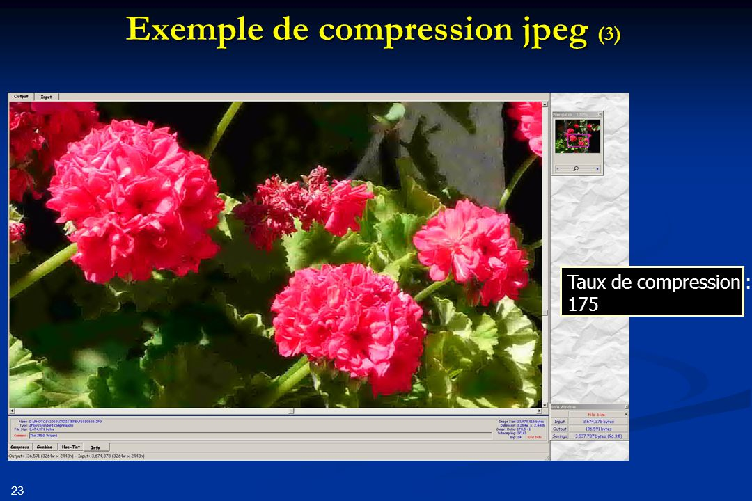 Exemple de compression jpeg (3)
