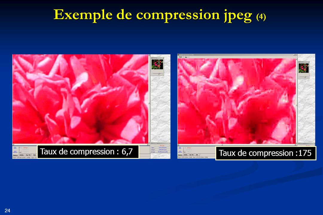 Exemple de compression jpeg (4)