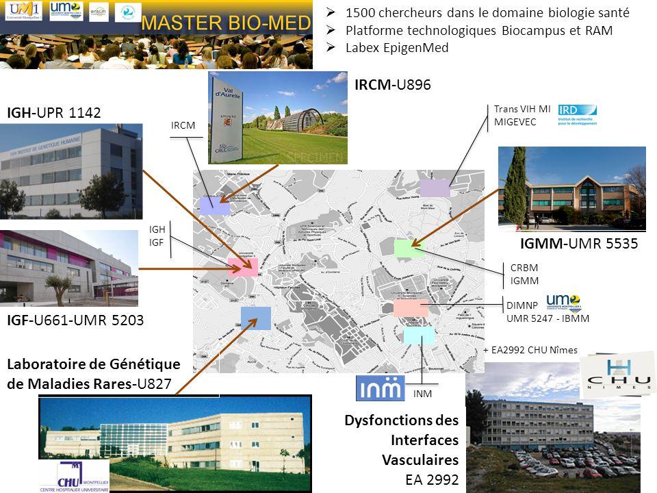Laboratoire de Génétique de Maladies Rares-U827
