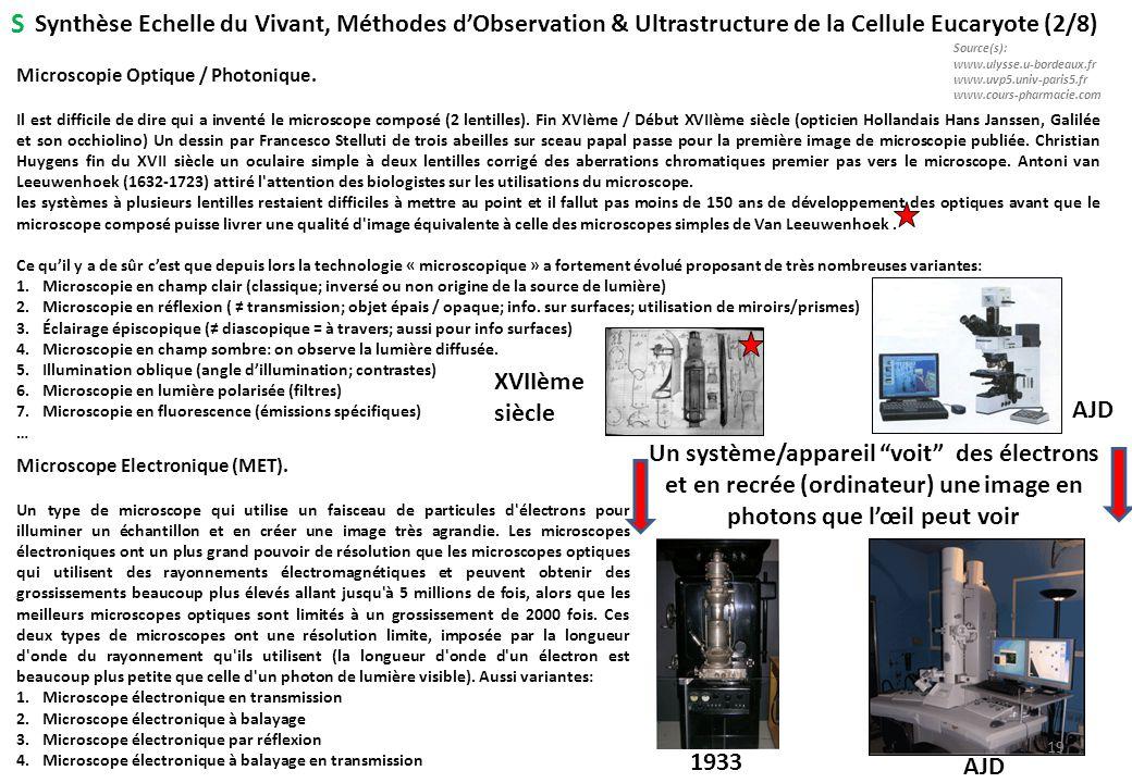 S Synthèse Echelle du Vivant, Méthodes d'Observation & Ultrastructure de la Cellule Eucaryote (2/8)