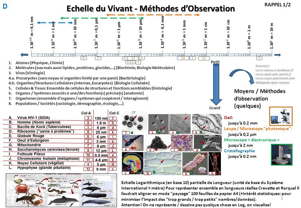 Echelle du Vivant - Méthodes d'Observation