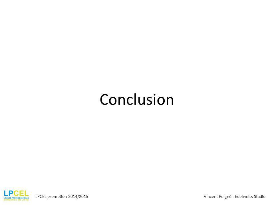 Conclusion LPCEL promotion 2014/2015 Vincent Peigné - Edelweiss Studio