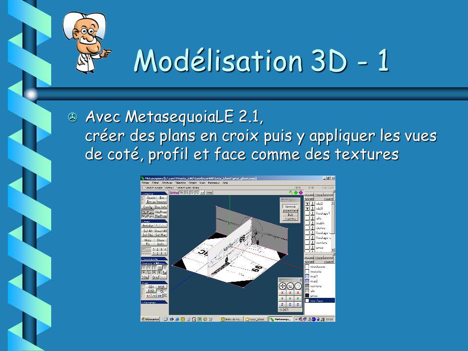 Modélisation 3D - 1 Avec MetasequoiaLE 2.1, créer des plans en croix puis y appliquer les vues de coté, profil et face comme des textures.