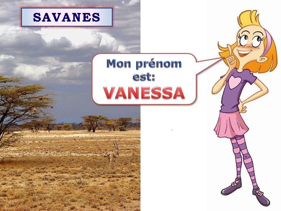 SAVANES Mon prénom est: VANESSA