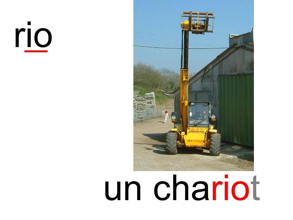 rio un chariot instit90