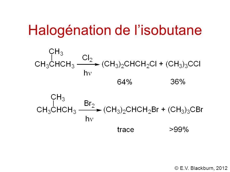 Halogénation de l'isobutane
