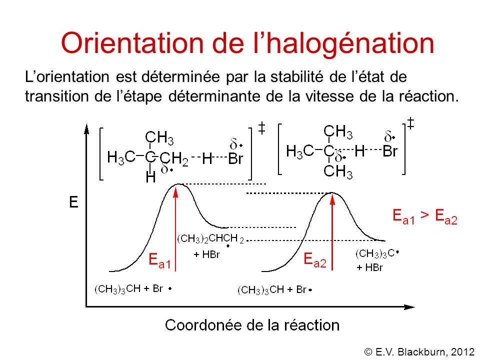 Orientation de l'halogénation