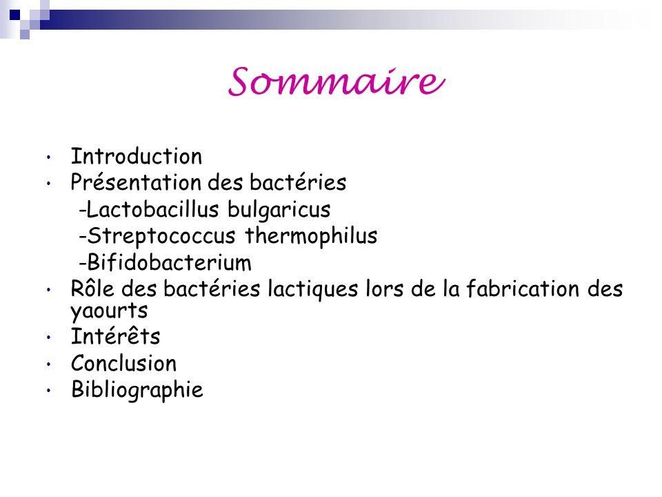 Sommaire Introduction Présentation des bactéries