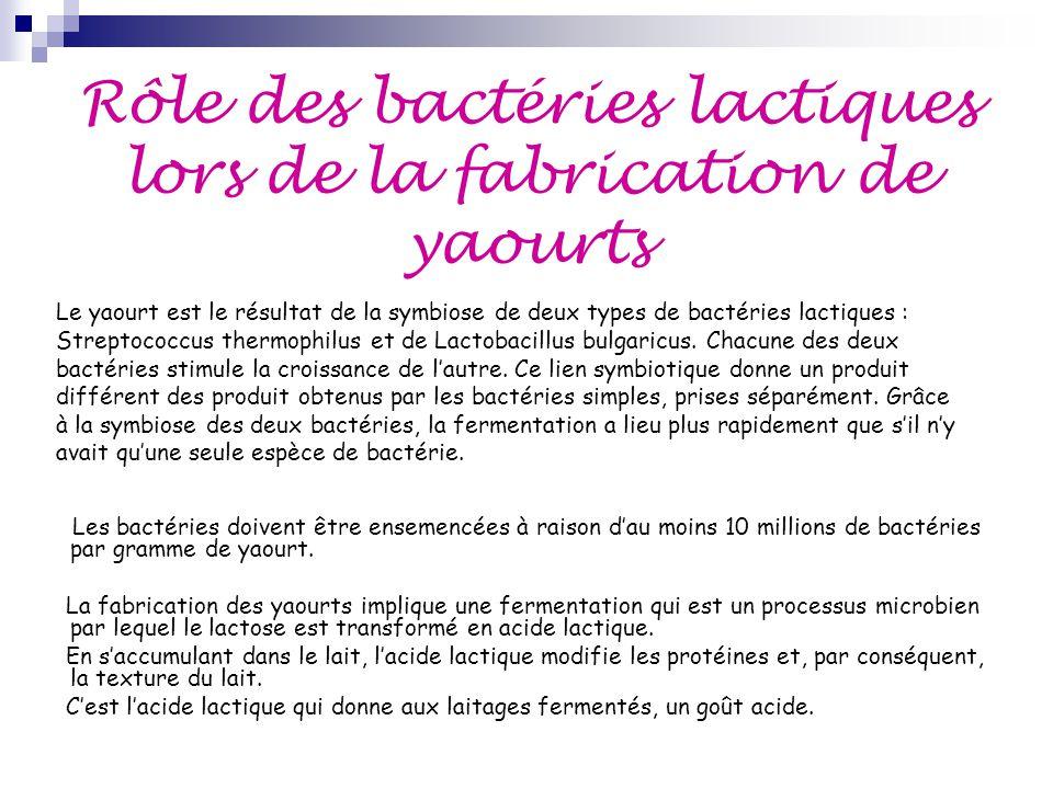 Rôle des bactéries lactiques lors de la fabrication de yaourts
