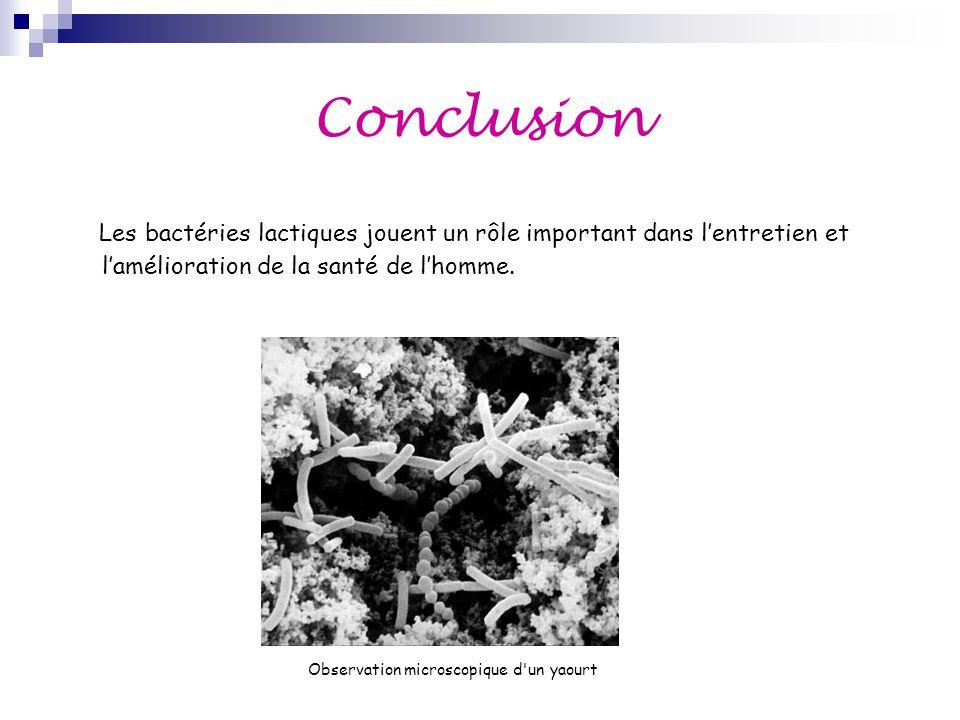 Conclusion Les bactéries lactiques jouent un rôle important dans l'entretien et l'amélioration de la santé de l'homme.