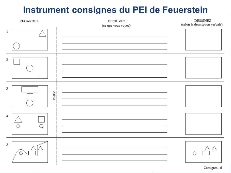 Instrument consignes du PEI de Feuerstein