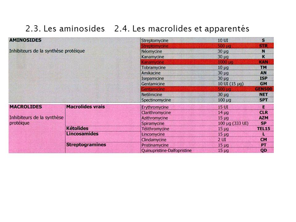 2.3. Les aminosides 2.4. Les macrolides et apparentés