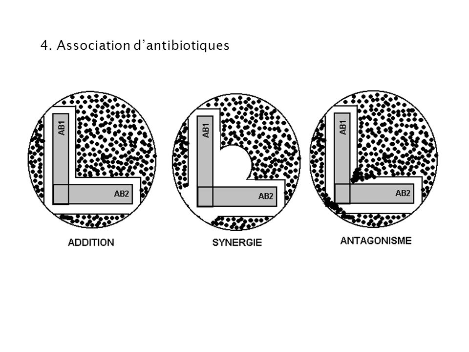 4. Association d'antibiotiques