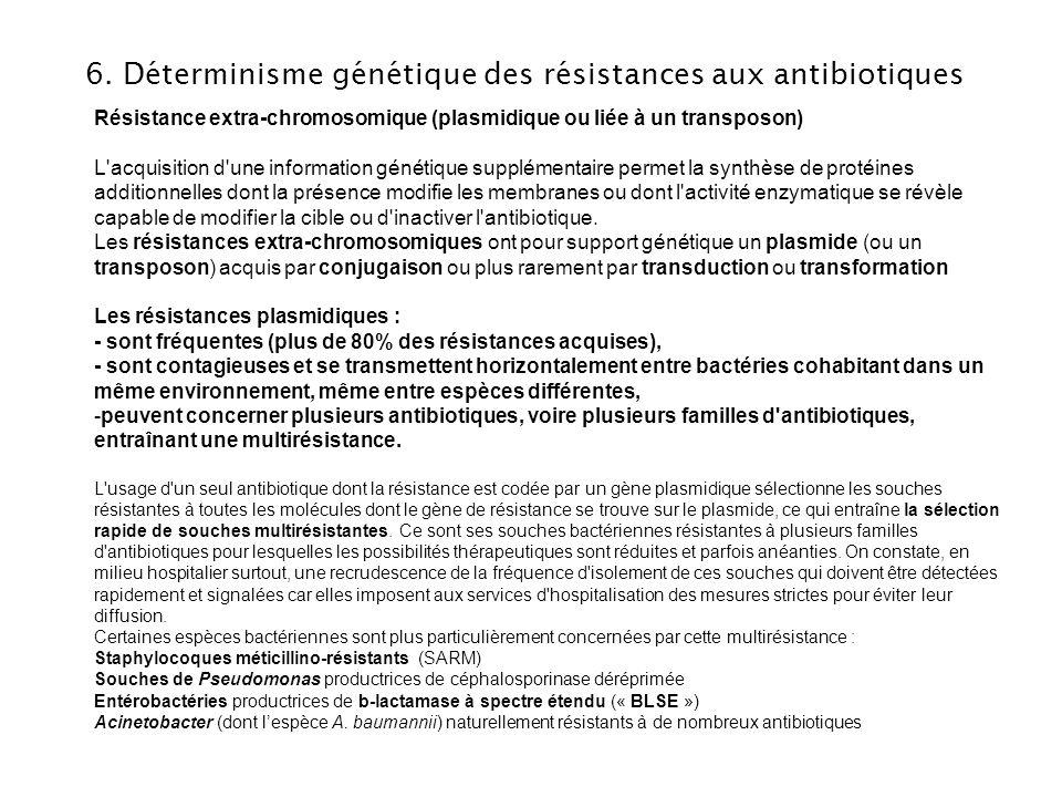 6. Déterminisme génétique des résistances aux antibiotiques