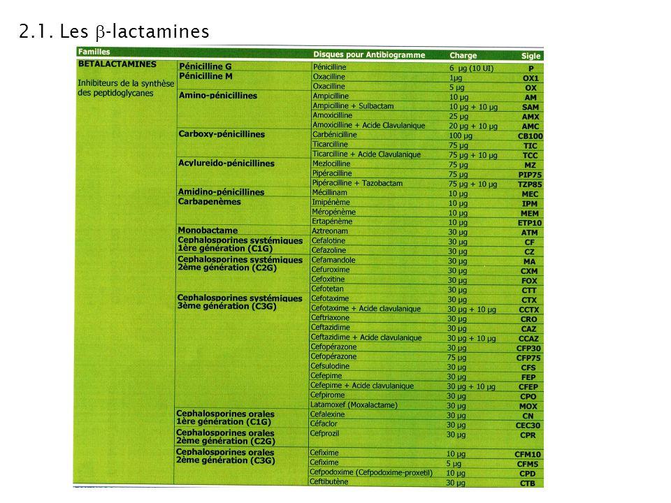 TS1 ABM - Cours de Microbiologie