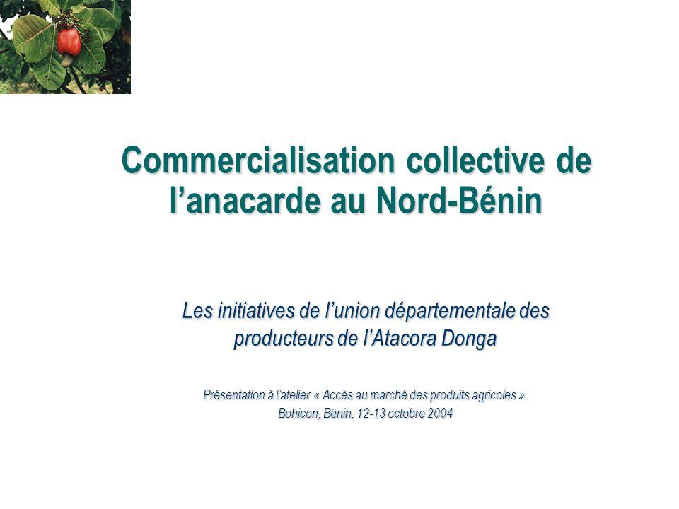 Commercialisation collective de l'anacarde au Nord-Bénin