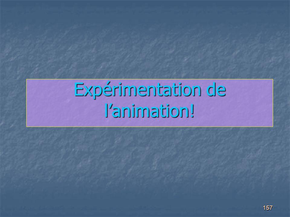 Expérimentation de l'animation!