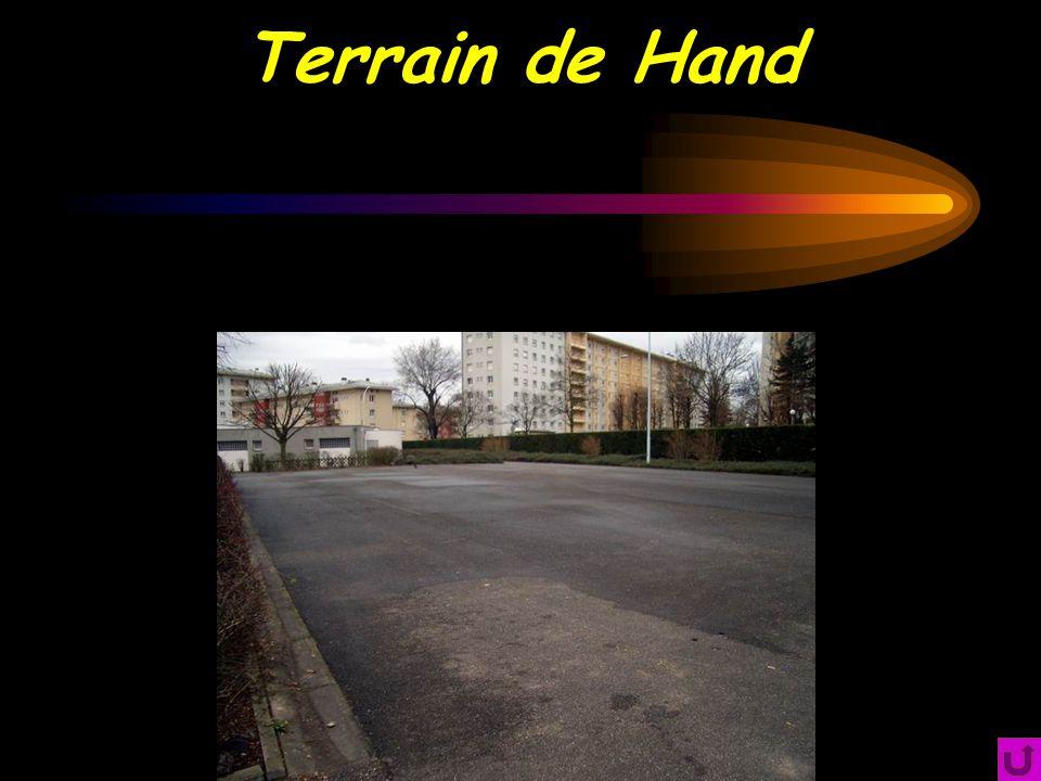 Terrain de Hand