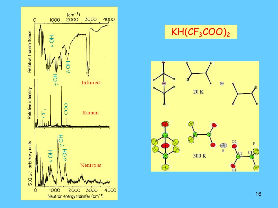 KH(CF3COO)2 n OH d OH g OH Infrared COO CF3 Raman g OH d OH n OH