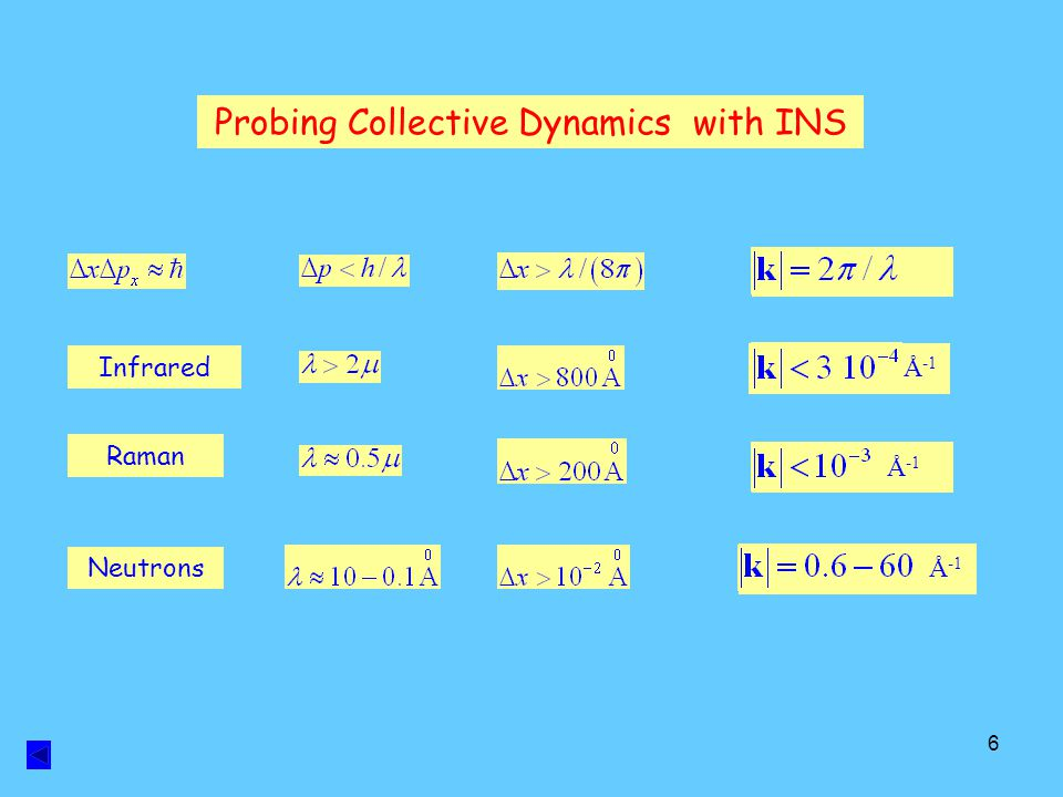 Probing Collective Dynamics with INS