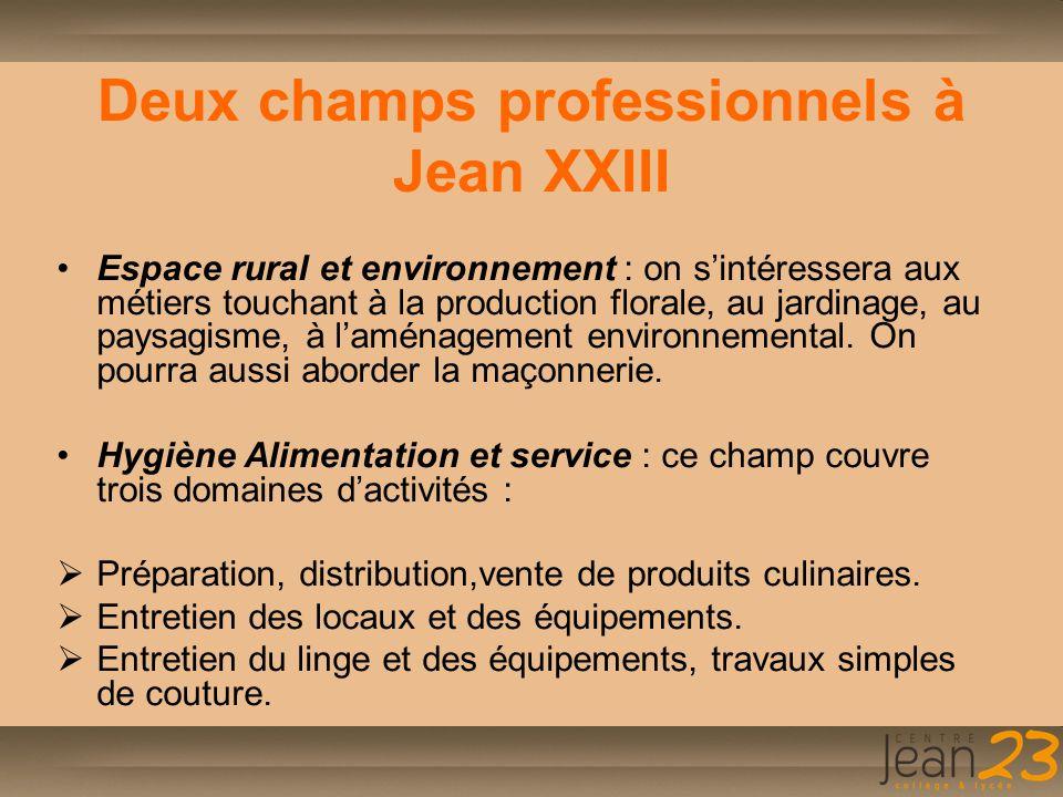 Deux champs professionnels à Jean XXIII
