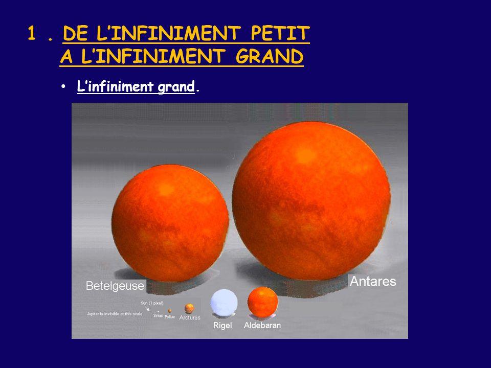 1 . DE L'INFINIMENT PETIT A L'INFINIMENT GRAND