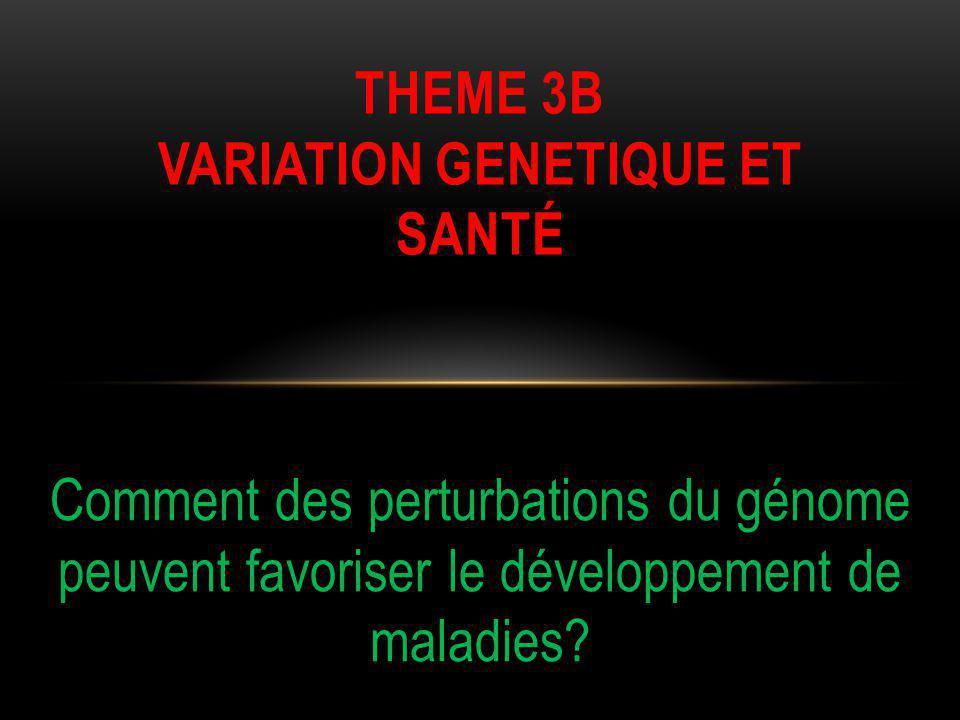 THEME 3b VARIATION GENetique et santé