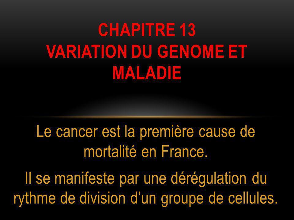 Chapitre 13 Variation du genome ET MALADIE