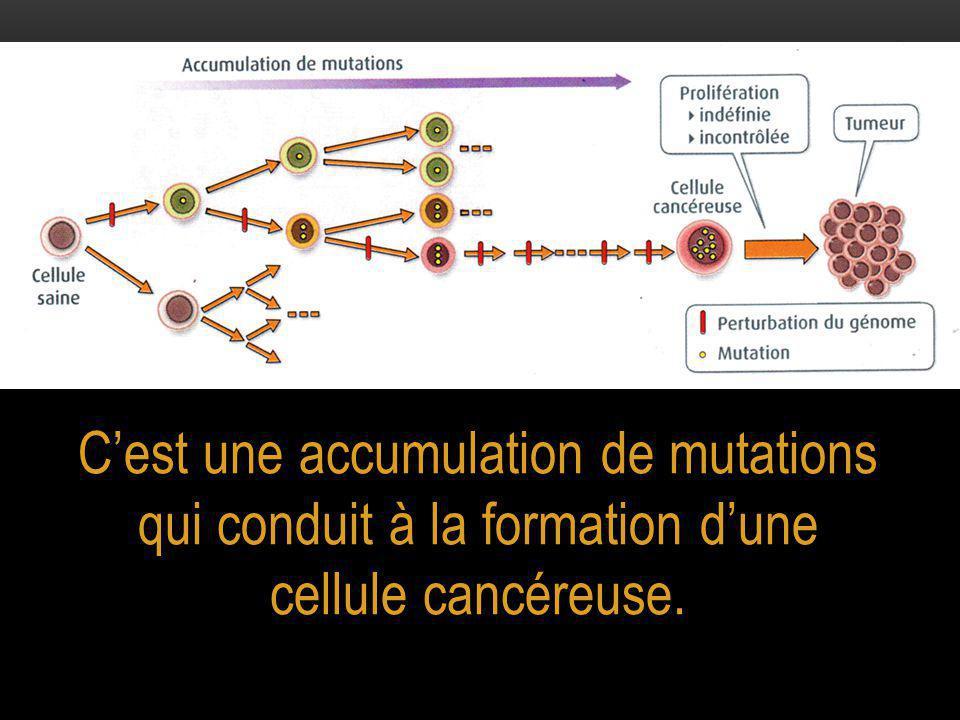 C'est une accumulation de mutations qui conduit à la formation d'une cellule cancéreuse.
