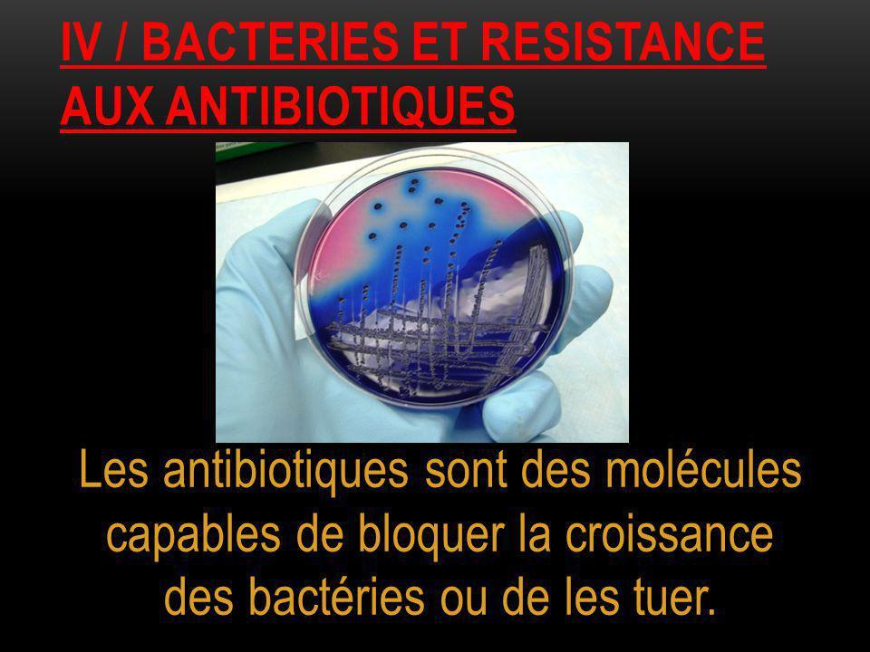 Iv / bacteries et resistance aux antibiotiques